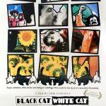 "smARTfilms Series: Quirky Musicals - ""Black Cat, White Cat"" (1999)"