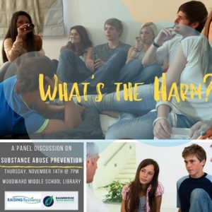 WHAT'S THE HARM? A Substance Abuse Prevention Panel Discussion