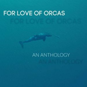 Jill McCabe Johnson and For Love of Orcas