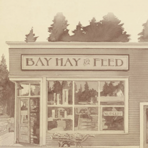 Bay Hay and Feed
