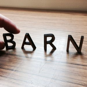 BARN Offers New ONLINE Classes!