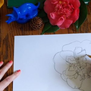 BIMA Art in Action from Home