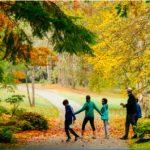 BLOEDEL: Second Annual Gratitude Day