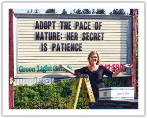Green Light Garage: The Motherboard