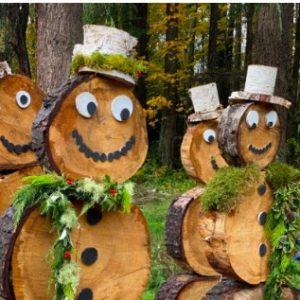 Bloedel: Winter in the Woods