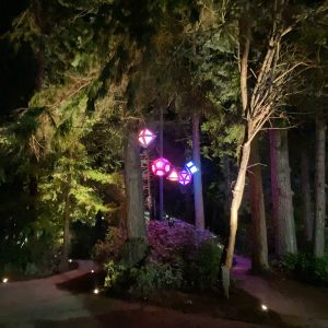Wintertide Light Art Park Tours