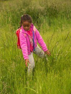 African American little girl in pink jacket running hands through tall green grass